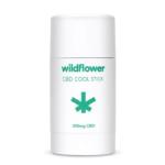 Wildflower CBD Cool Stick (300 mg) 1